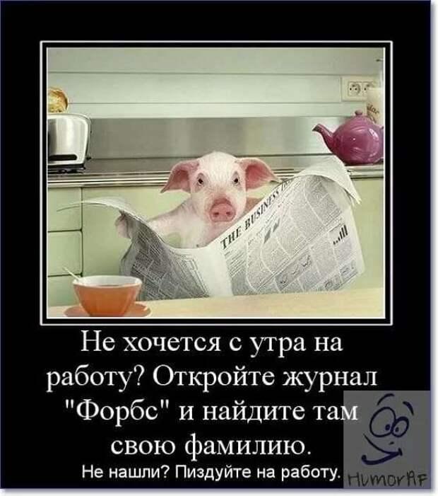 Смешные комментарии. Подборка chert-poberi-kom-chert-poberi-kom-21500317082020-7 картинка chert-poberi-kom-21500317082020-7