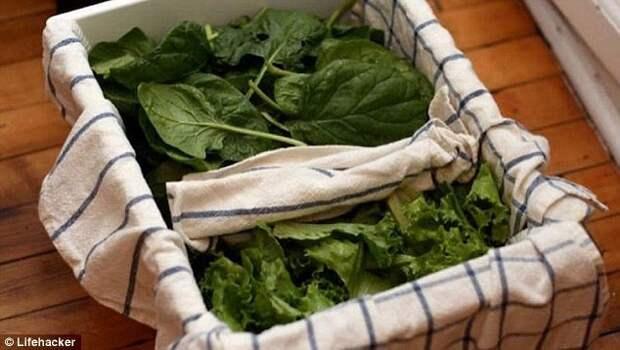 Если выстелить контейнер для зелени влажным полотенцем, и в таком виде хранить в холодильнике, зелень не испортится дольше. Можно даже завернуть ее целиком в полотенце. Попробуйте, это действительно работает. готовка, готовка еды, лайфхаки, на кухне, полезные советы, советы, советы бывалых