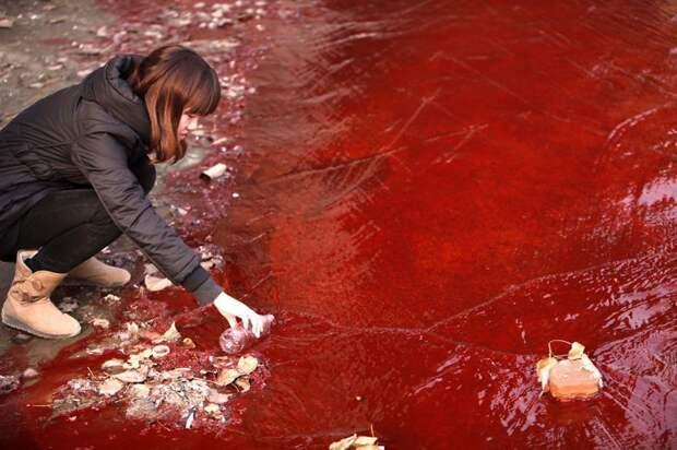 6. Журналист делает забор красной загрязнённой воды из реки Хуанхэ загрязнение, китай, экология