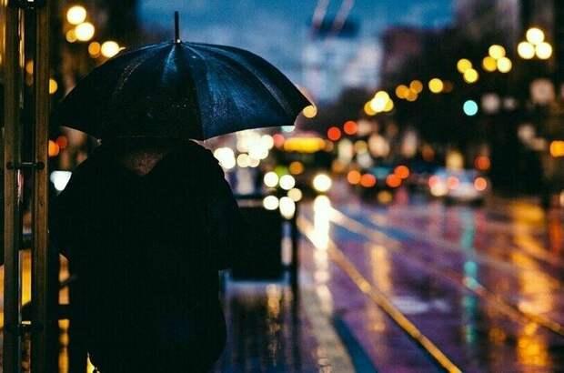 В Москве за ночь выпало 20% месячной нормы осадков