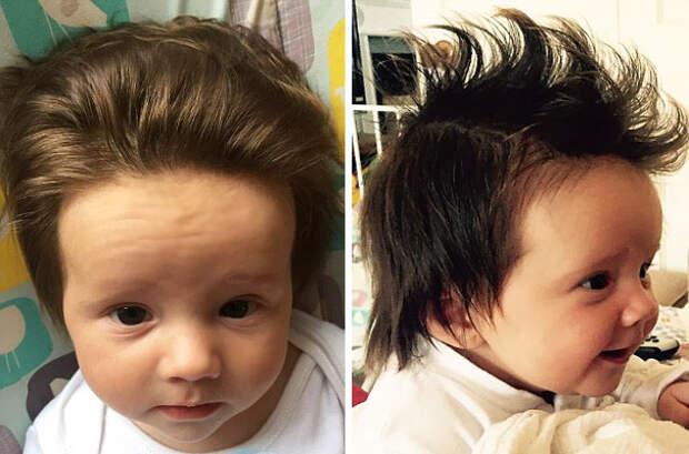 funny-hairy-babies-54-57062e862d508__605