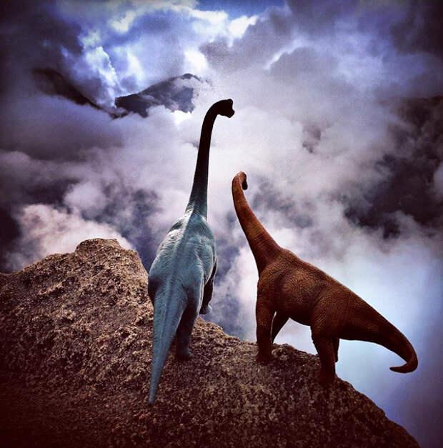 travel-photography-dinosaur-toys-dinodinaseries-jorge-sa_019