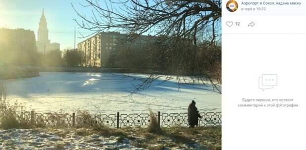 Фото дня: Амбулаторный пруд покрылся льдом