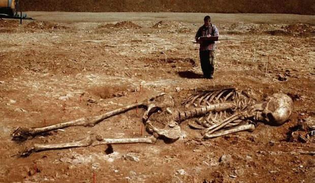 Человечество на Земле было не одно?