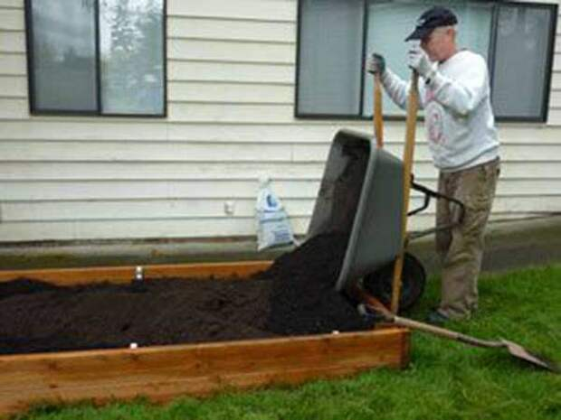 30 отличных фото идей, как огородить грядки на даче