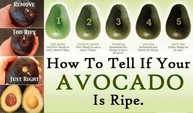 http://illuzone.net/illu/wp-content/uploads/2014/09/how-to-tell-if-your-avocado-is-ripe_534834884103d_w1500.jpg