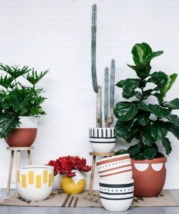 Интересные варианты организации мини-клумб и размещения горшечных растений, достойные внимания
