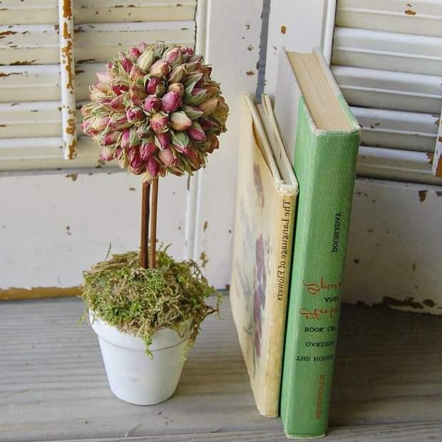 Топиар из сухих цветов