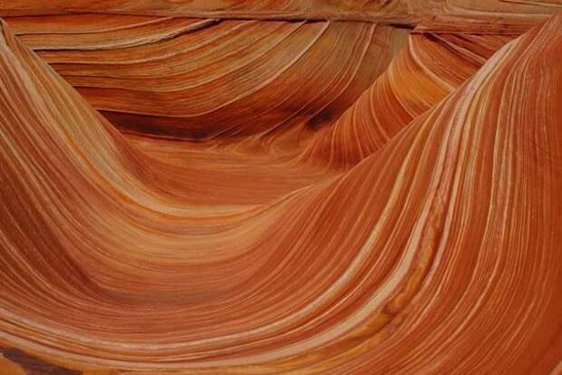 Волна (Аризона, США) (2)