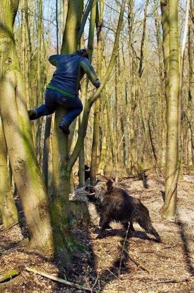 9. Сельские жители хорошо бегают и лазают по деревьям деревня, жизнь, колхоз, прикол, село, селянство, смех, юмор
