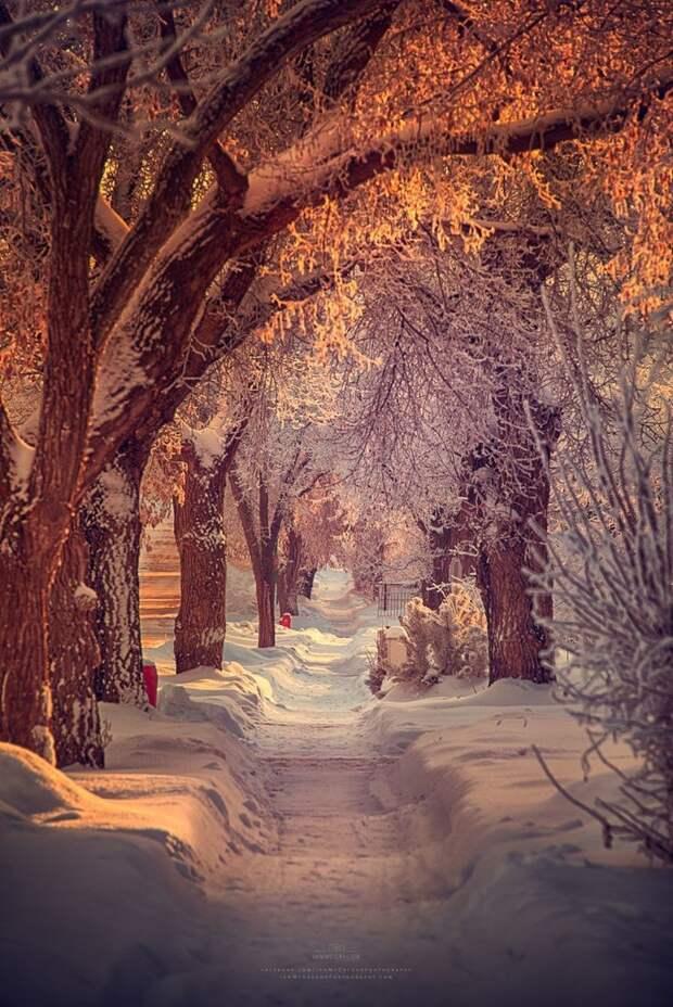 17 фотографий, которые доказывают, что зима - прекрасное время года