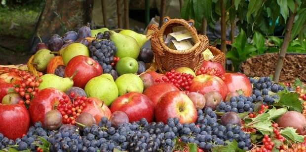 Болезни и вредители ягодных культур