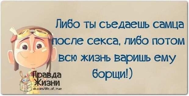 5672049_1416858610_frazki23 (604x307, 32Kb)
