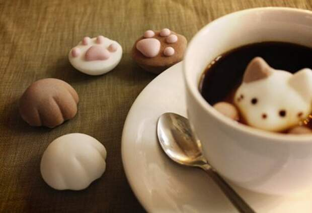 Плавающие зефирные котята в вашей чашке горячего кофе!