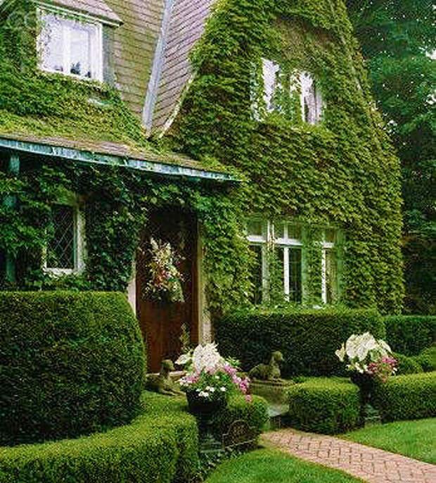 Идеи оформления и дизайна фасада дома