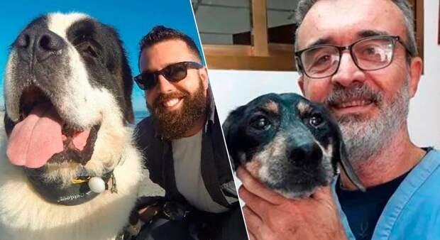 20 трогательных фотографий собак и их хозяев в начале дружбы и через многолет