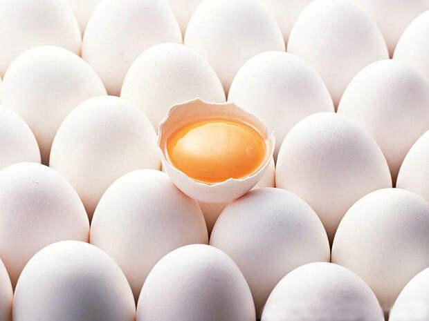 Куриное яйцо что полезнее желток или белок