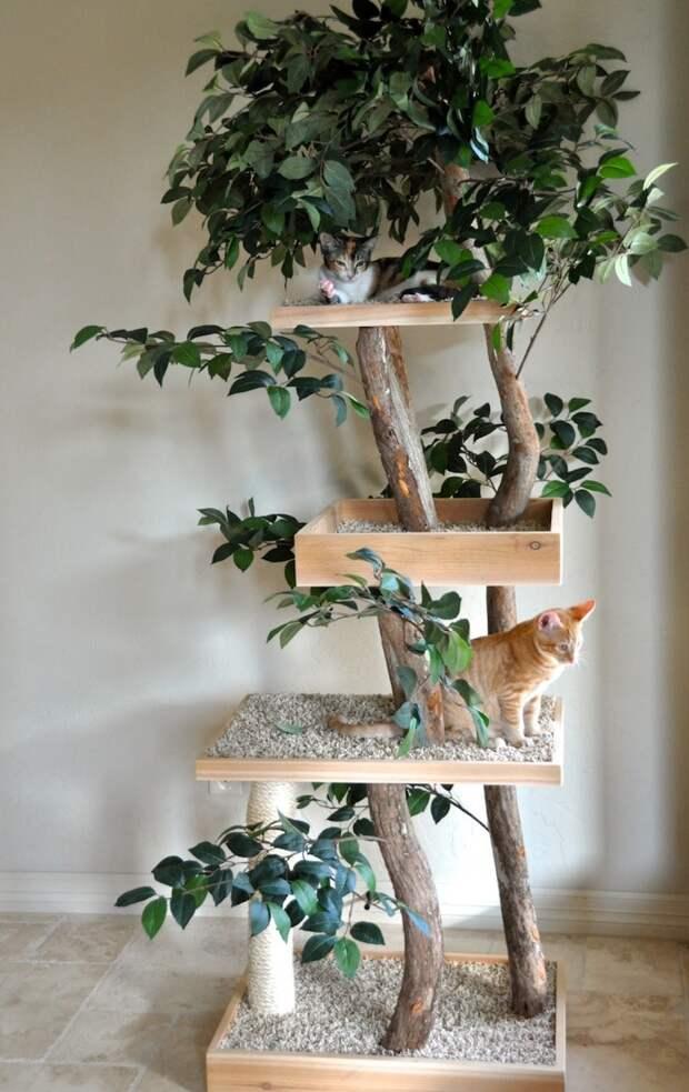 Дерево с секретом: кошка точно будет рада такому подарку
