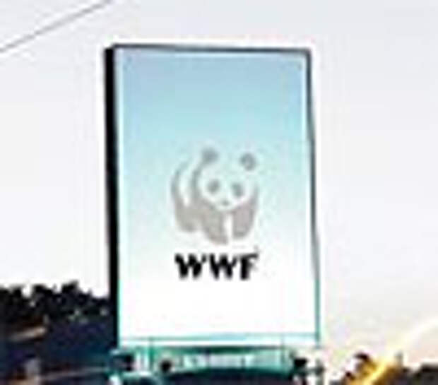 От глобального потепления страдает даже логотип WWF
