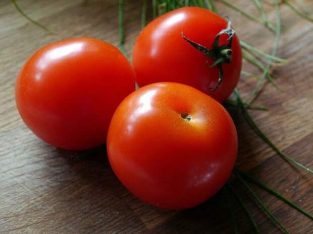 Собственные семена томатов