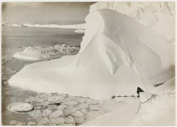 Первая Австралийская антарктическая экспедиция в фотографиях Фрэнка Хёрли 1911-1914 3