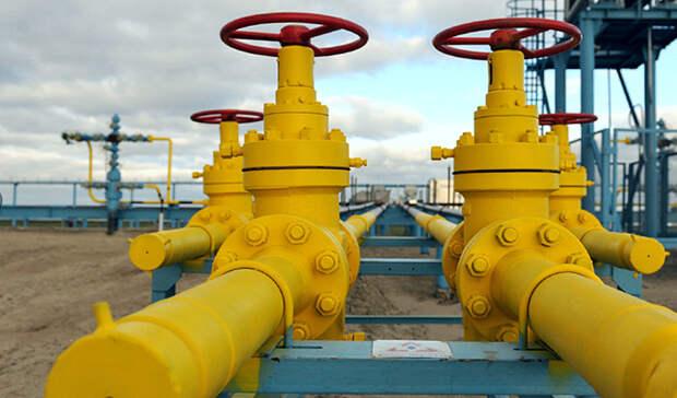 Перспективы транзита газа через Украину после 2024 года обсудил Новак суполномоченным ФРГ