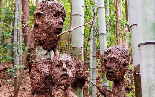 Студент изЯпонии создал жутковатый, нокрасивый Лес Отчаяния