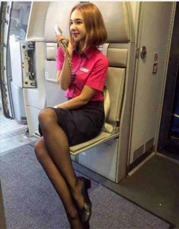 Ножки стюардесс. Подборка chert-poberi-styuardessy-chert-poberi-styuardessy-53370108022021-2 картинка chert-poberi-styuardessy-53370108022021-2