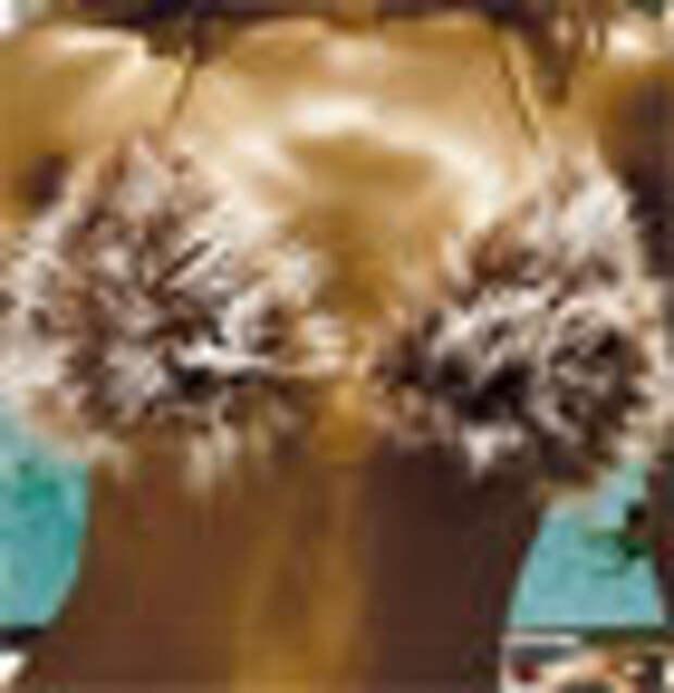 Меховое бикини и шерстяные стринги в рекламе воды Perrier