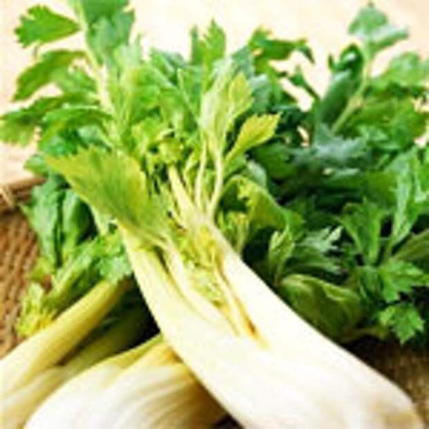 http://www.inflora.ru/img/celery-juice.jpg