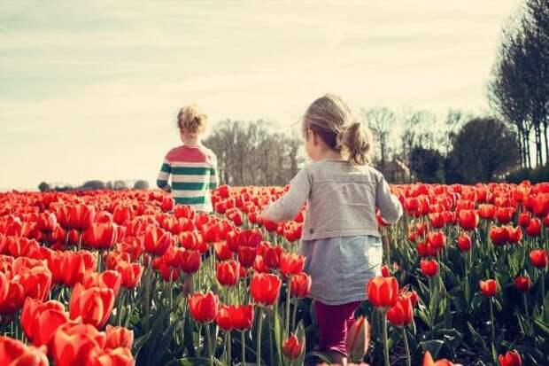 Воображаемые друзья детей: есть ли повод для паники?