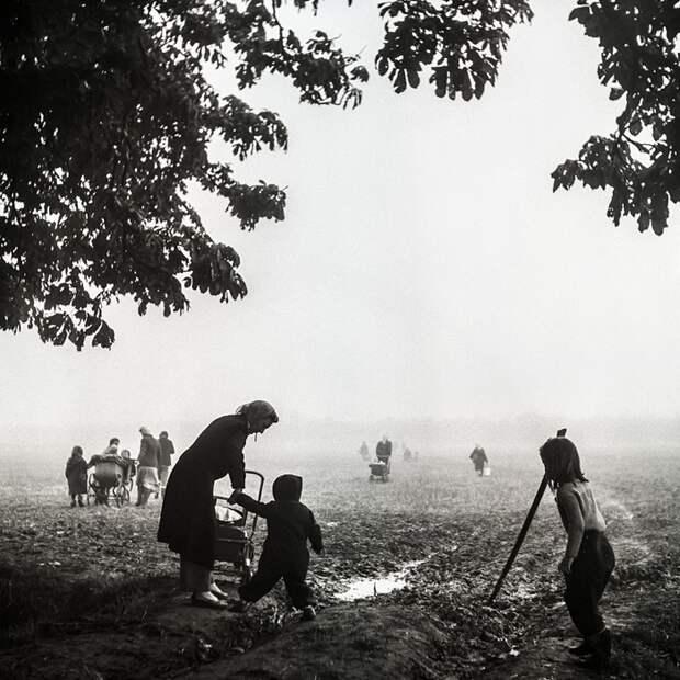 Вышла книга о всемирно известной фотожурналистке
