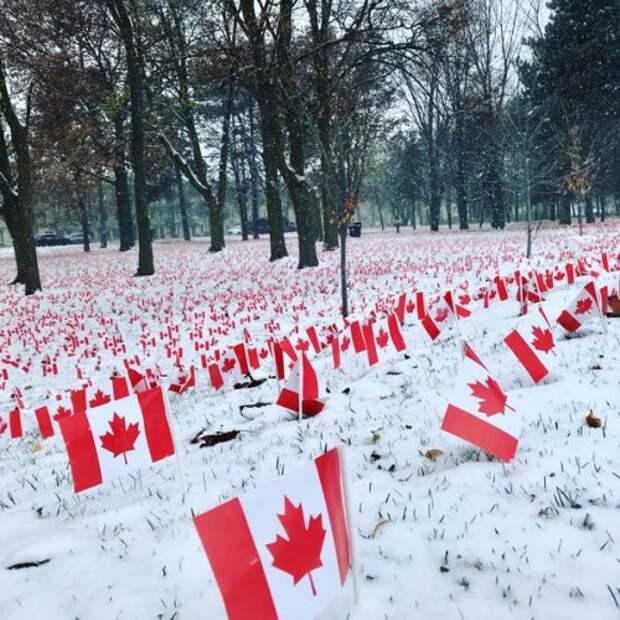 7 угарных фото, которые доказывают, что в Канаде происходит что-то странное