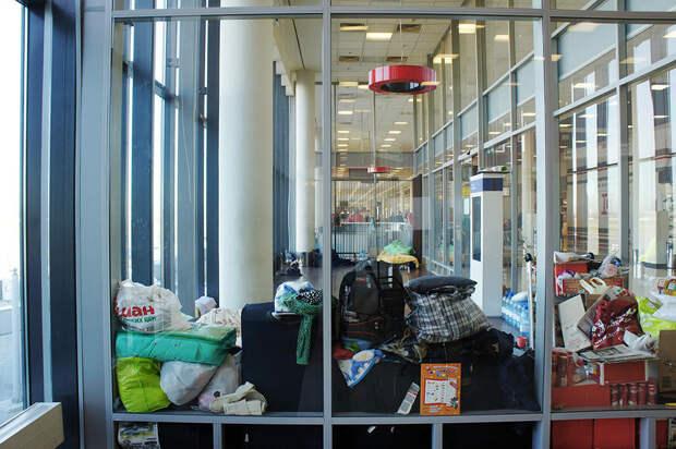 Как в аэропорту Шереметьево живет семья курдских беженцев