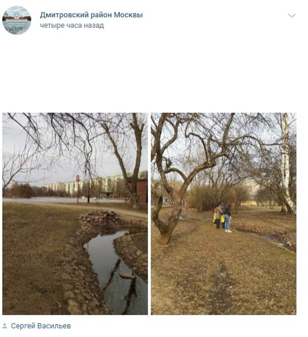 Фото дня: в яблоневом саду в парке «Ангарские пруды» вновь появился ручей