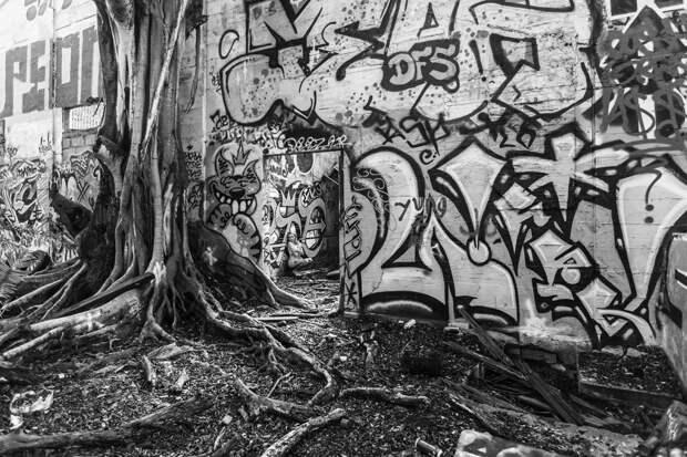 Обнаженные женщины в заброшенных местах