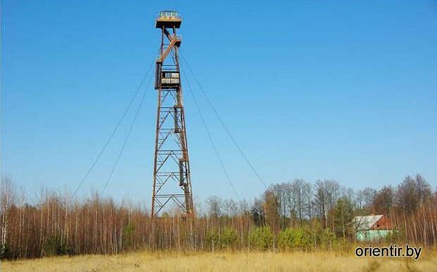 Ядерный взрыв в Беларуси: загадка Ольманских болот