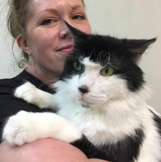 Несчастный кот, который большую часть жизни просидел в переноске, обрел любовь и ласку хозяев