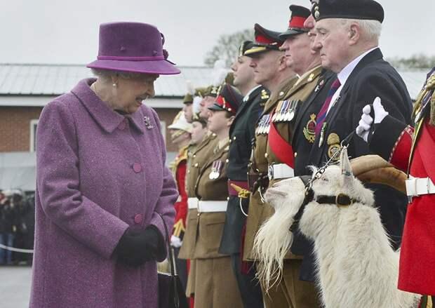 Армии НАТО: Великобритания – армия, 200 лет не умеющая воевать на суше