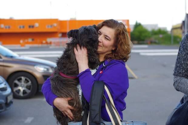 Главное в судьбах собак - люди, спешащие им на помощь