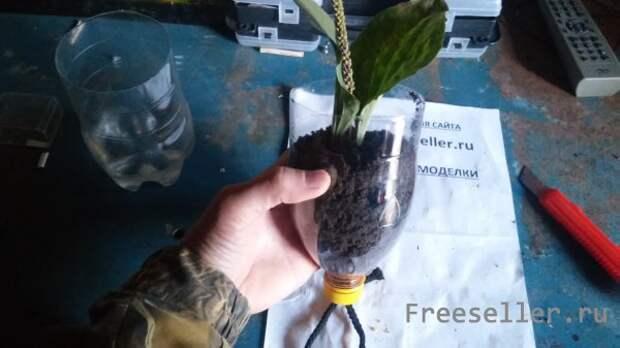 Автополив для растений из пластиковой бутылки