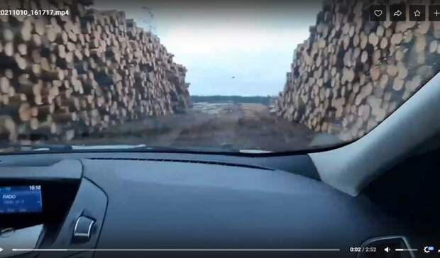 «Нас уничтожают»: жители Якшур-Бодьинского района Удмуртии о вырубке леса