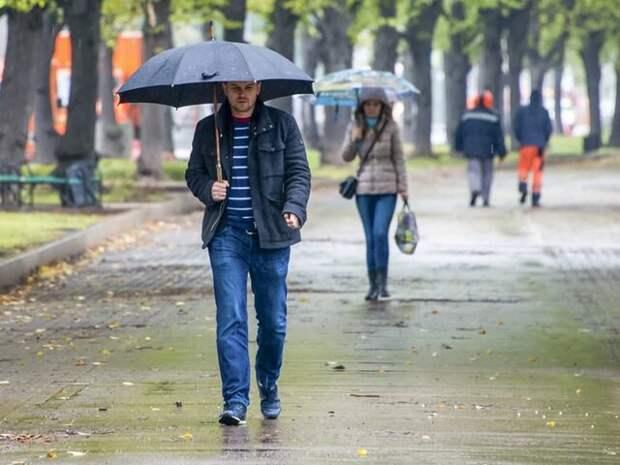 Москвичам рассказали о погоде в понедельник