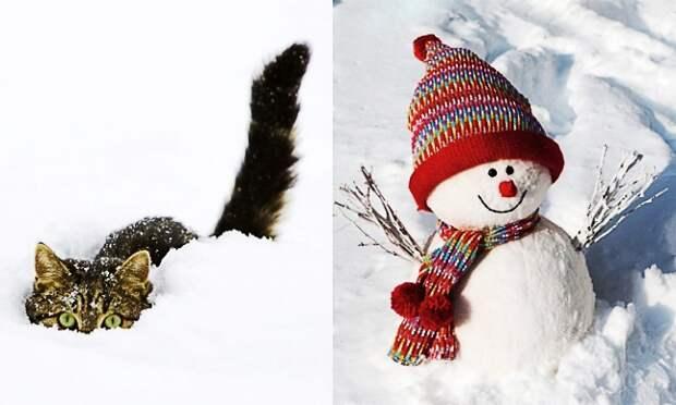 21причина полюбить зиму