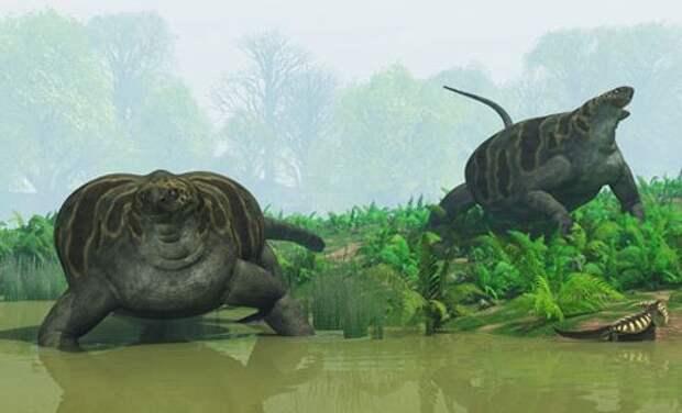 Казеиды: Древние пентюхи Казеиды, Динозавры, Животные, Пресмыкающиеся, Юмор, Природа, Книга животных, Длиннопост
