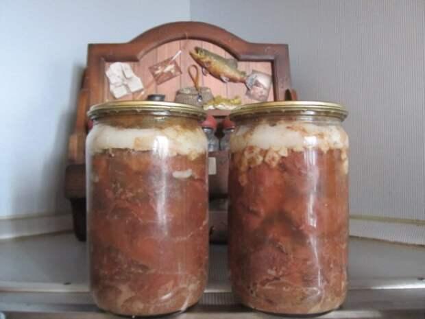Как сделать тушенку в домашних условиях. Рецепты приготовления тушенки из различных видов мяса
