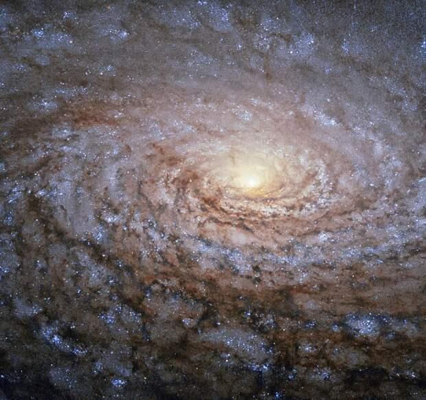 Галактика М63