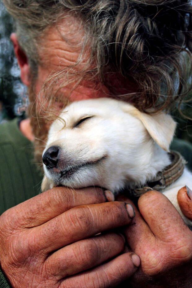 2. Уткнулся в щенка, не хотел, чтобы кто-то видел его слезы бездомный, любовь, собака