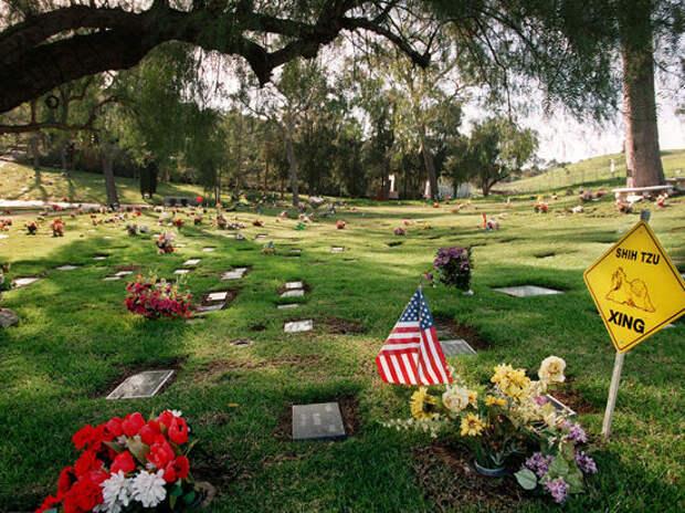 Американского полицейского похоронили на кладбище домашних животных