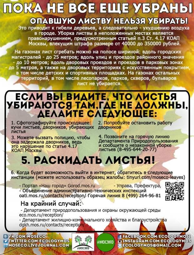 listya2_sm